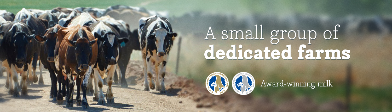 Award-winning Australian milk